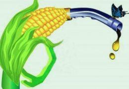 biocarburant-bioethanol